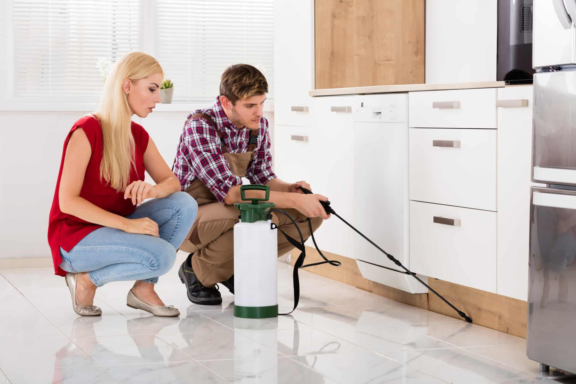 pest control with homeowner